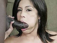 Michelle is only 20 years old and she loves black dick.  She especially loves it when they fuck her up the ass.  She lies down on the couch and starts rubbing her pussy to get herself nice and wet.  She even fingers her little asshole to prep herself for his monster cock.  After awhile of stuffing a butt plug in her ass, Michelle is finally greeted by the ebony shaft that she\'s going to fuck.  She takes him in her mouth and swallows his big organ as she chokes him down.  After he\'s rock hard, she mounts his lap and takes him first in her pussy.  They fuck that way for awhile, then she takes him right up her tight little asshole until he cums.