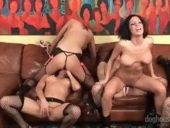 In this porn video you can see adorable bitches