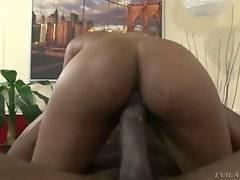 Tough black man and ebony cutie are passionately fucking.