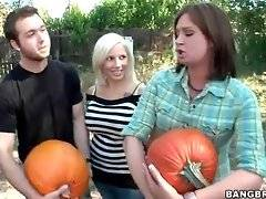 A company of friends are choosing pumpkins for the Halloween party.